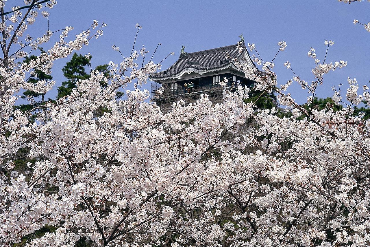 冈崎公园 image